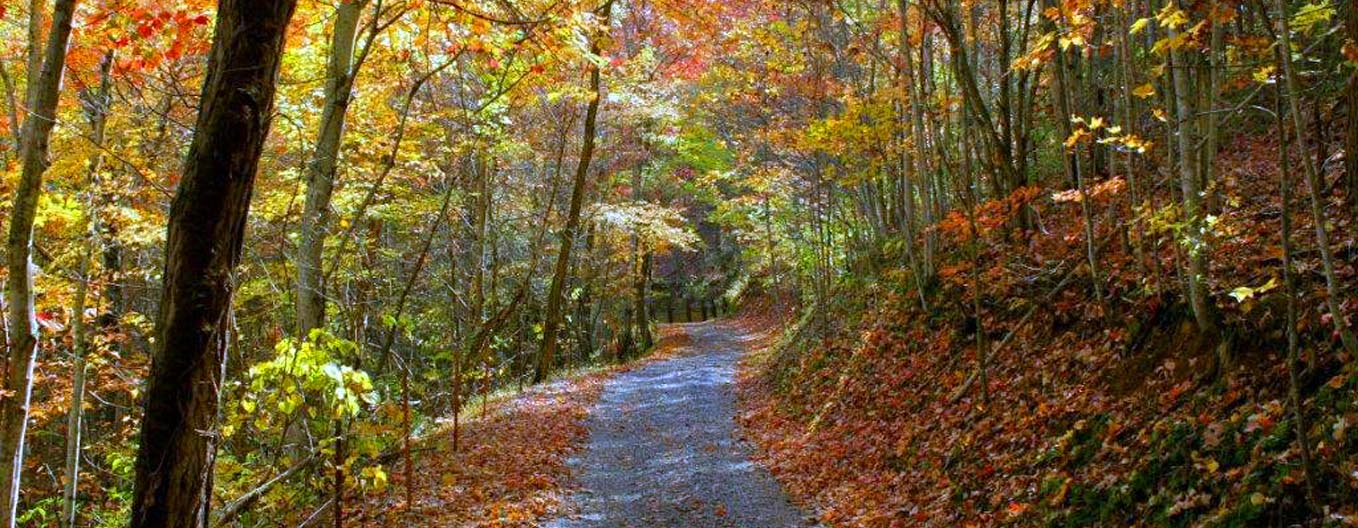 Autumn in the Smoky Mountains
