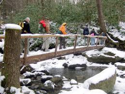 Wilderness Wildlife Hiking in the Snow, Autumn Ridge Cabin Rentals