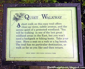 Smoky Mountains National Park Quiet Walkways Hiking Trails