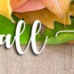 2021 Best Fall Festivals in the Smoky Mountains